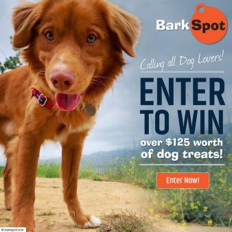 Riley's Treat Giveaway Sweepstakes